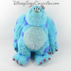 Sulli DISNEY Monsters y Sully Co.