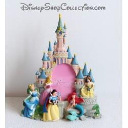 Cadre photo résine princesses DISNEYLAND PARIS Cendrillon Blanche Neige Aurore Ariel Belle château Disney