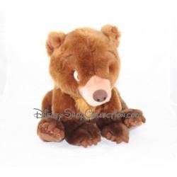Peluche Koda ours DISNEYLAND PARIS Frère des Ours 28 cm