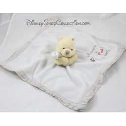Doudou plat Winnie l'ourson DISNEY STORE Welcom to Pooh's World bords vichy