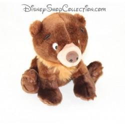 Teddy bear Koda DISNEY brother bear STORE