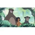 Acquisto della giungla libro Disney - opportunità